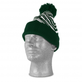 GREENWHITE ZEBRA KNIT HAT