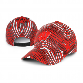 Wisconsin Badgers Smash Cap